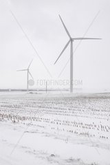 Windmills in the snow in Saint-Pierre-le-Viger France