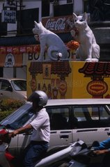 Statues représentant des chats Kuching Sarawak Malaisie