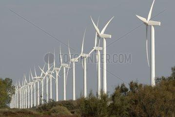 Wind farm Camargue in France