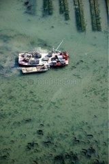 Oyster boats near oyster parks Morbihan France