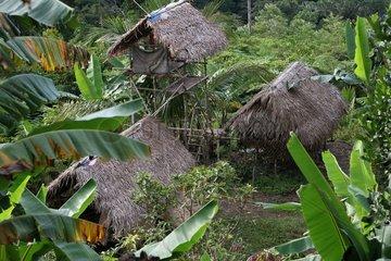 Houses on stilts Tau't Batu Palawan Philippines