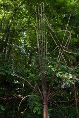 Scupture in a garden