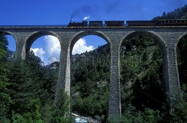 The train Pignes steam on a viaduct in Provence France