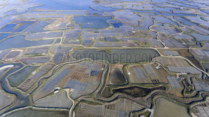 Aerial view of the salt marshes of Guerande  Atlantic coast  France