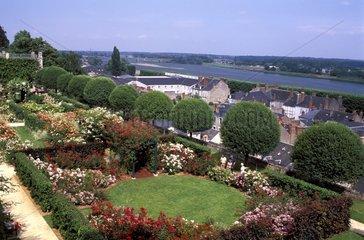 Roseraie de la Loire à Blois