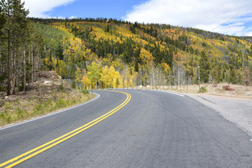 Road in the Rocky Mountain National Park  Colorado  USA