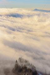 Foehn wind on the Jura mountains  Cretes du Haut Jura  towards the Col de la Faucille  Jura  France