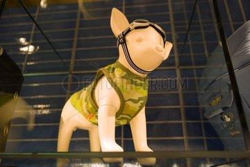 Mannequin portant une tenue militaire pour chien Tokyo Japon
