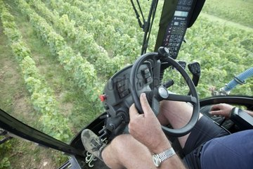 Winemaker at the wheel of his machine harvesting France
