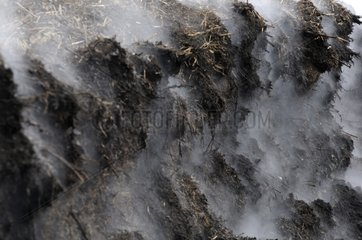 Compost mound in fermentation with steam Hirsingue France