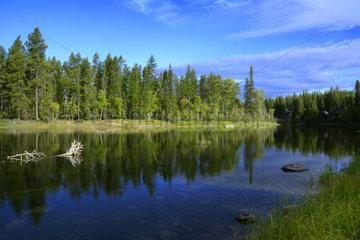 Landscape in Montana  USA