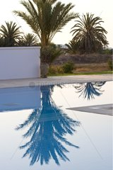Palm trees and their reflection in a pool Djerba Tunisia