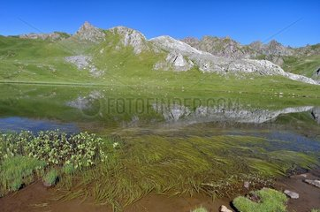 Lake Paradis  Pyrenees National Park  France