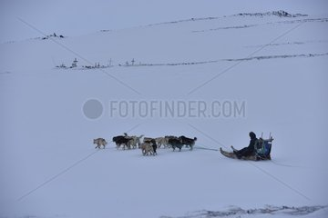 Inuit hunter going to hunt and going past the cemetery  february  Igterajivit district  East Greenland