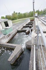 Fish pass on the Hydroelectric Dam in Gambsheim  Bas-Rhin  Alsace  France