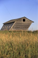 Old barn tilted by the prevailing winds Saskatchewan Canada