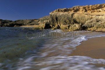 Plage et côte rocheuse calcaire de Robe SA Australie