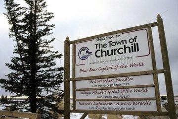 Churchill Capital of the polar bear Canada