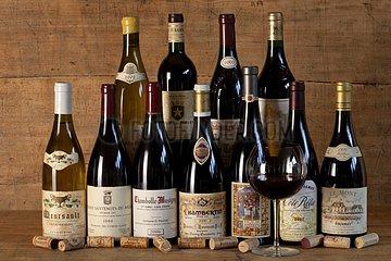 Bottles of wines