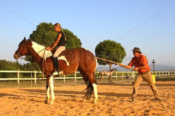 Training exercise of a Horse with a young rider