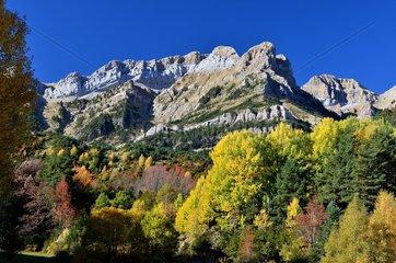 Pena Telera in autumn  Tena valley  Pyrenees  Aragon  Spain