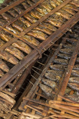 Smoked fishes in traditional market - Seram Maluku Indonesia