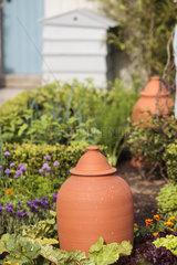Cloches in a garden