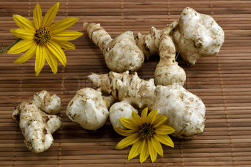 Jerusalem artichoke (Helianthus tuberosus)  flowers and tubers  vegetable garden  France