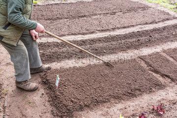 Preparing the kitchen garden soil before sowing