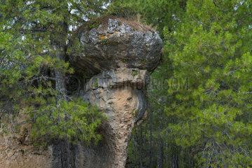Ciudad Encantada  Serranía de Cuenca Natural Park  Cuenca  Castilla - La Mancha  Spain  Europe