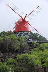 Windmill  Azores  Portugal