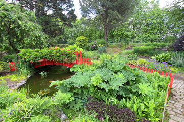 Small red wooden bridge in the botanical garden of Bayonne  Zen and bucolic atmosphere  Aquitaine  France