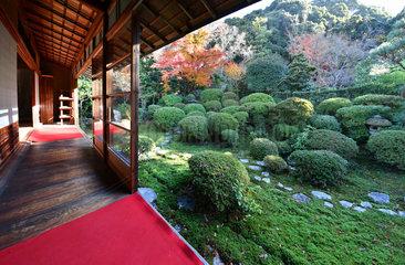 Anrakuji's garden  Tokyo  japan