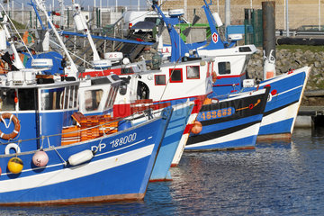 Fishing boats in the port of Treport - Normandy France
