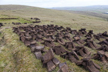 Peat extraction for fuel  Shetland  Spring