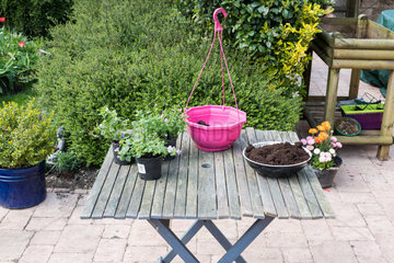 Making of a flowered hanging basket in a garden