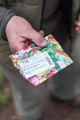 Sowing of Radishes 'Le radical' in a kitchen garden