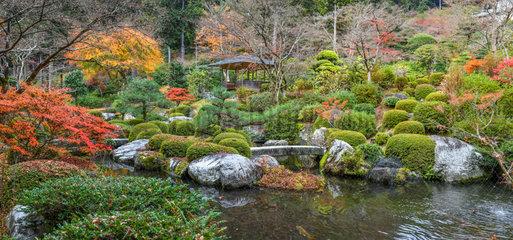 Mimurotoji's garden  Kyoto  Japan