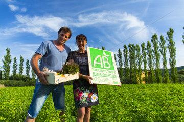 Organic farming and eco-cottage Les Terres du Vancon  Les Demesses  Volonne  Val de Durance  Alpes Haute Provence  France  Europe
