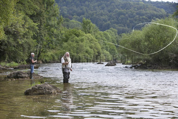 Fly fishing on the Doubs river  Bremoncourt  Glere  Doubs  Franche-Comte  France