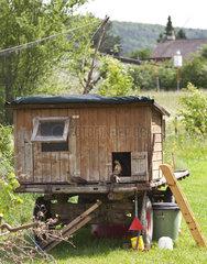 Hen house on wheels in a garden