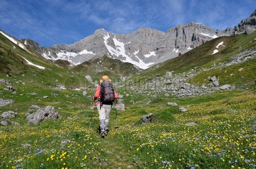 Hike towards the Pas d'Azun in spring  Aspe valley  Pyrenees  France