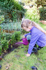 Little girl layering a box tree in a garden