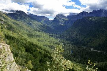 Landscape in Glacier National Park  Montana  USA