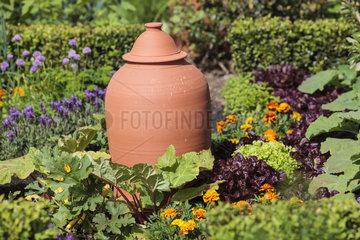 Cloche in a garden