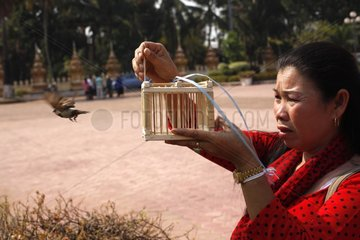 Woman releasing a bird to the That Luang - Laos