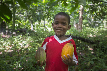 7-year-old boy with two pods of cocoa  one ripe and one not ripe  Santana  Sao Tome and Principe Island