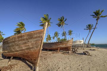 Dhows under construction in Belo sur Mer  Madagascar