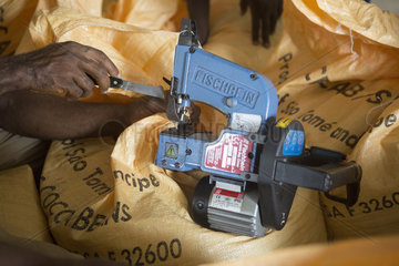 Closing of cocoa bags for export to Europe  Drying and Bagging Center  CECAB  Organic Cocoa Production and Export Cooperative  Fair Trade  Guadalupel  Sao Tome and Principe Island