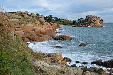 Pink Granite Coast  Ploumanach  Brittany  France
